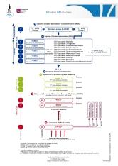 2014-12le19_etudes-medic_web